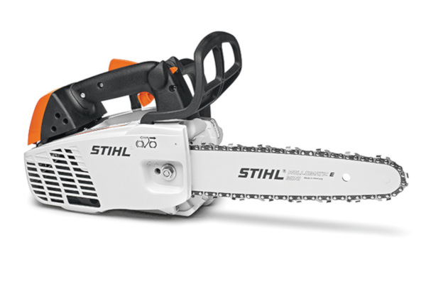 Stihl | In-Tree Saws | Model MS 194 T for sale at Landmark Equipment, Texas