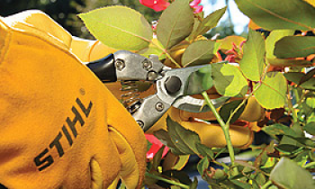 CroppedImage350210-Hand-Pruners.png