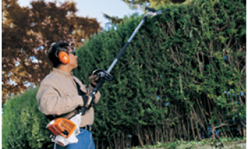 CroppedImage350210-Professional-Hedge-Trimmers.png